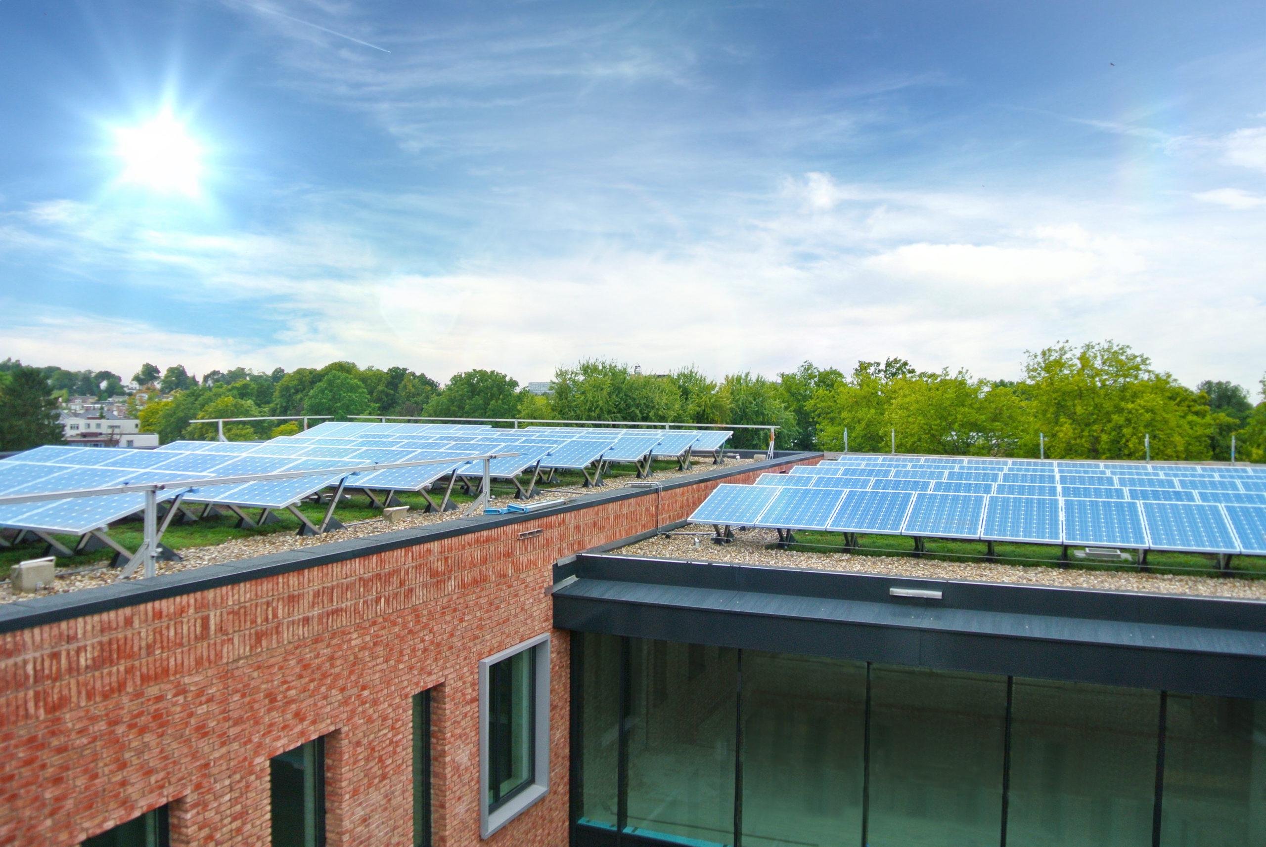 instalacja fotowoltaiczna i dach zielony