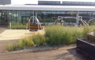 Galeria Północna dach zielony
